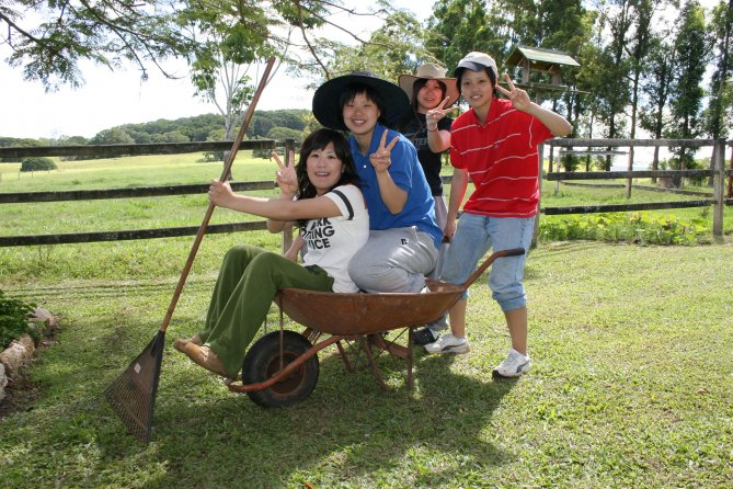 Students in wheelbarrow