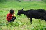 Boy with goat (1280x852)