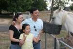 Family feeding horse