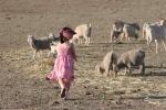 Girl running to goats