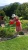 Guest watering garden