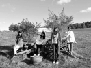J students with olive tree BW