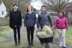 Wheelbarrow hay as group